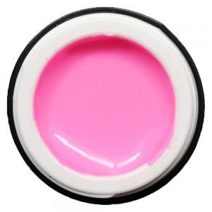 Begonia Pink K-78