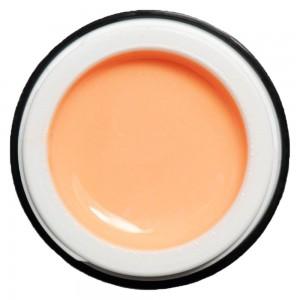 Peach Orange K-79